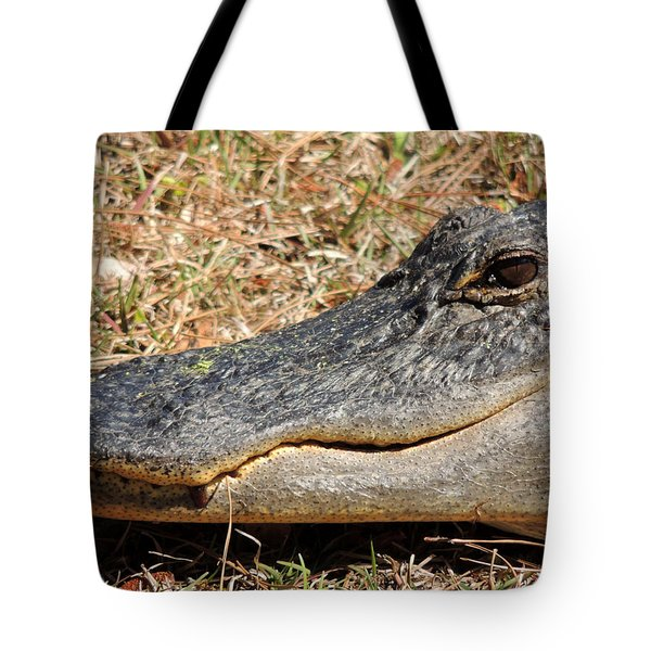Heres Looking At You Tote Bag by Kim Pate