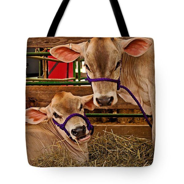 Heres Looking At You Tote Bag by Michael Porchik