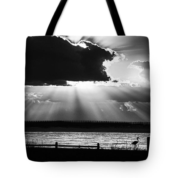 Tote Bag featuring the photograph Heron And  The Cloudburst by Michael Thomas
