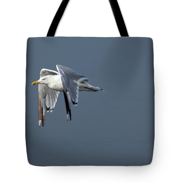 Herring Gull In Flight Tote Bag by Karol Livote