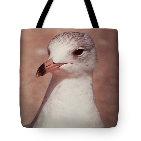 Tote Bag featuring the photograph Beach Gull On The Hunt by Belinda Lee
