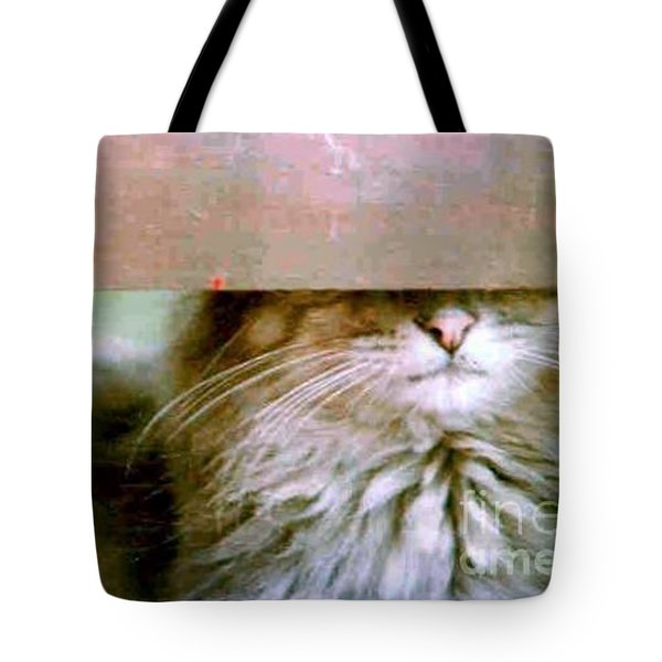 Tote Bag featuring the photograph Hey Diddle Diddle by Michael Hoard