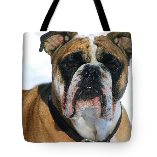 Tote Bag featuring the photograph Hey Good Looking by Kay Novy