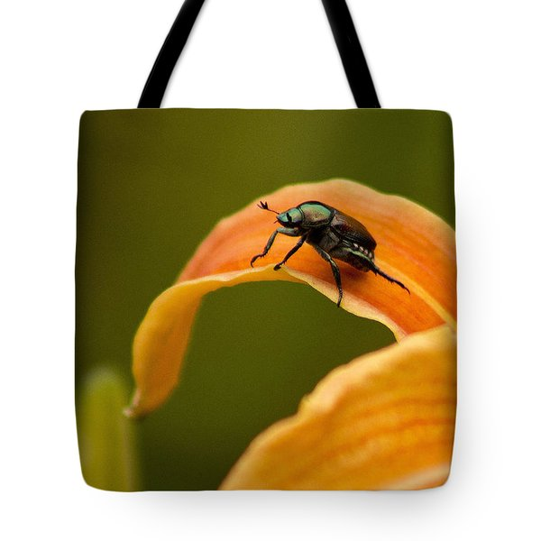 Tote Bag featuring the photograph Hey There by Ben Shields