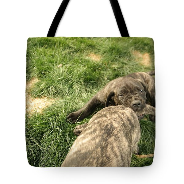 Hey You Come Back Here Buddy Tote Bag by Jeff Swan