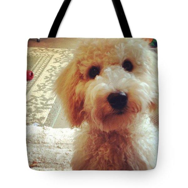 Doodledog Georgie Tote Bag