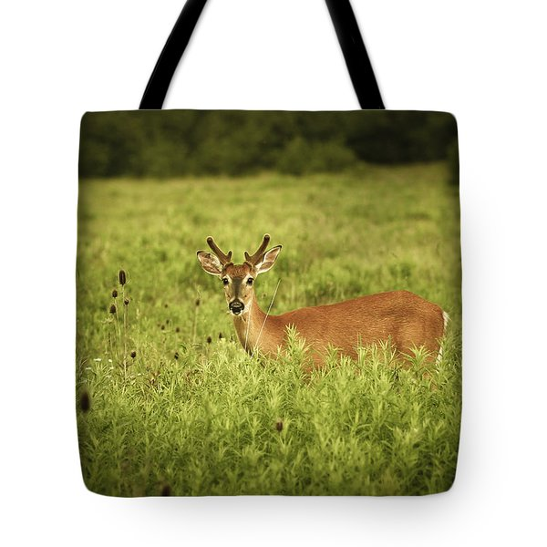 Hi Tote Bag by Shane Holsclaw