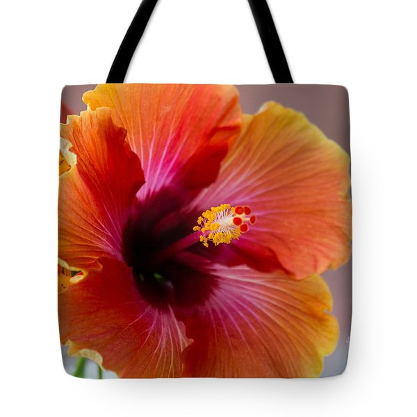 Tote Bag featuring the photograph Hibiscus 3 by Sally Simon