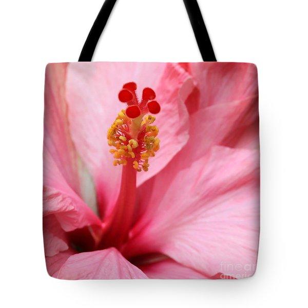 Hibiscus Flower Close Up Tote Bag by Sabrina L Ryan