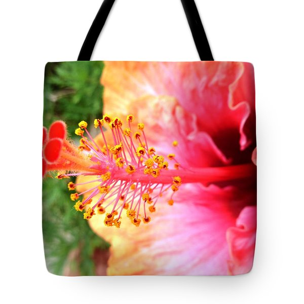 Hibiscus Flower Tote Bag by Julia Ivanovna Willhite