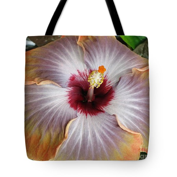Hibiscus  Tote Bag by Jennifer Wheatley Wolf