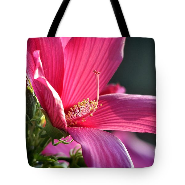 Tote Bag featuring the photograph Hibiscus Morning Bright by Nava Thompson