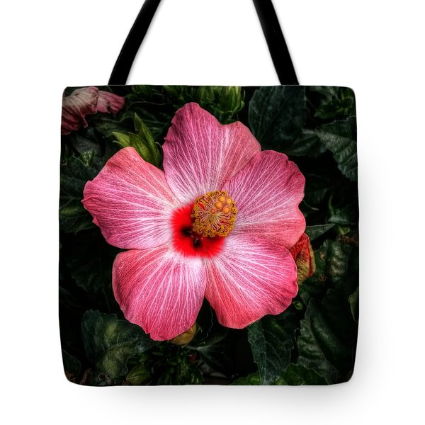 Hibiscus Sunset Tote Bag