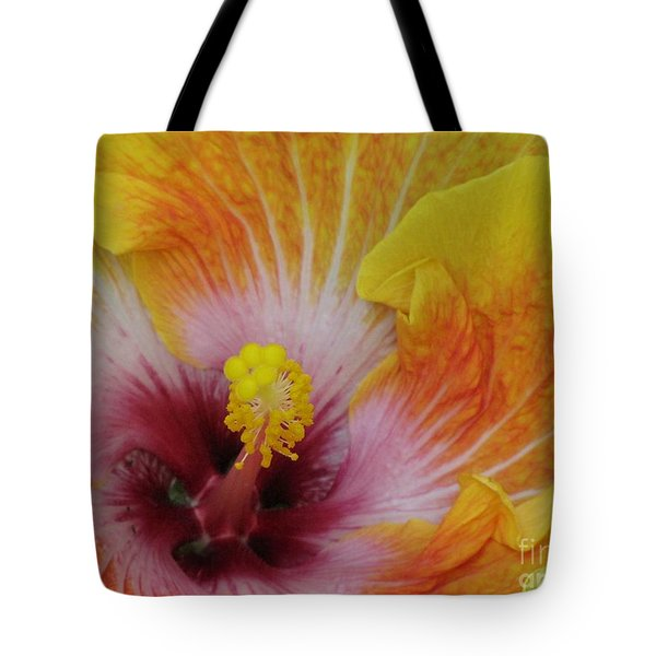 Tote Bag featuring the photograph Hibiscus by Tam Ryan