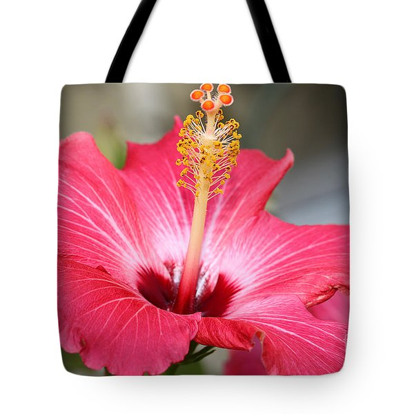 Tote Bag featuring the photograph Hibiscus by Todd Blanchard