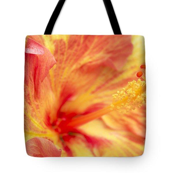Hibiscus Tote Bag by Tony Cordoza