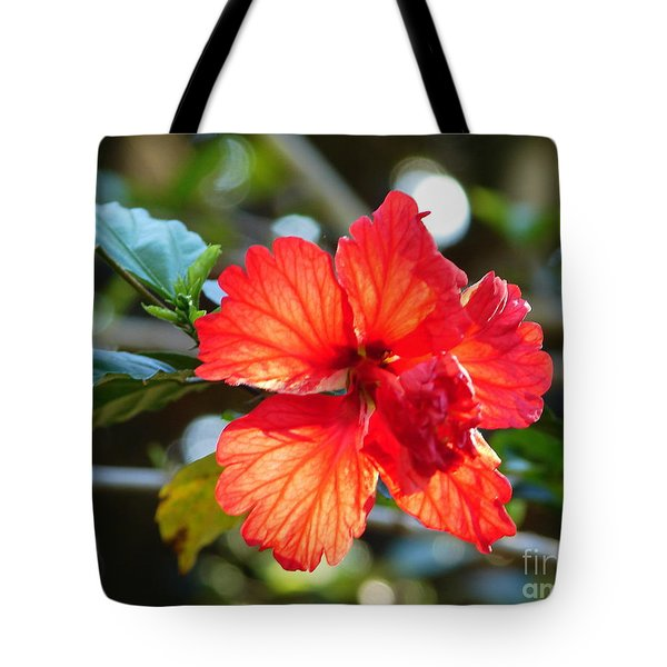 Hibiscus Veins Tote Bag by Lew Davis