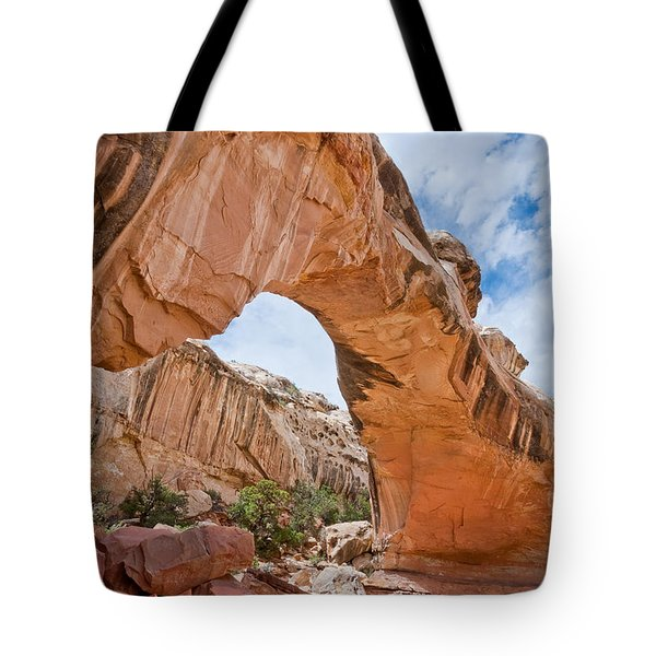 Tote Bag featuring the photograph Hickman Bridge Natural Arch by Jeff Goulden