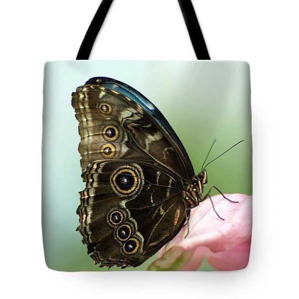 Tote Bag featuring the photograph Hidden Beauty Of The Butterfly by Debbie Green