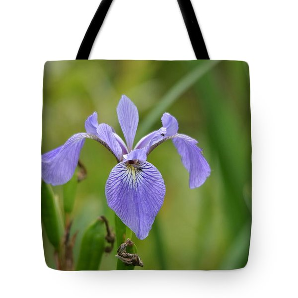 Hidden Companions Tote Bag