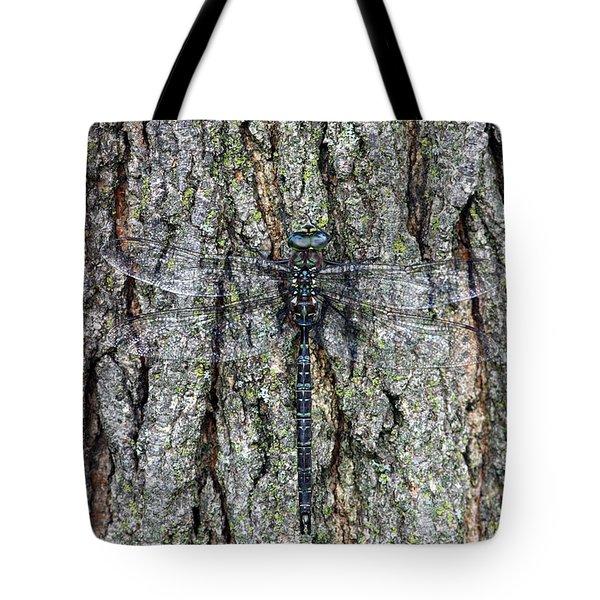 Hidden Dragon Tote Bag