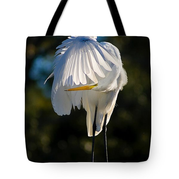 Hidden Tote Bag by Joan McCool