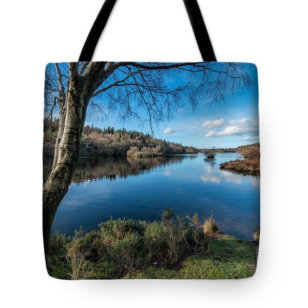 Hidden Lake Tote Bag by Adrian Evans