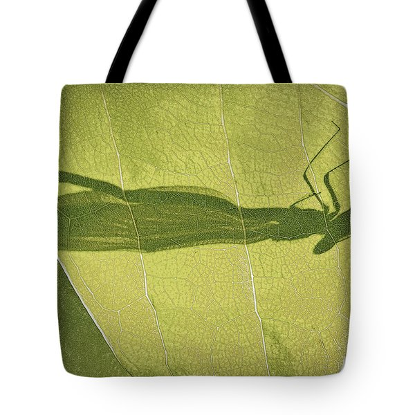 Hide And Seek Dragon..fly  Tote Bag