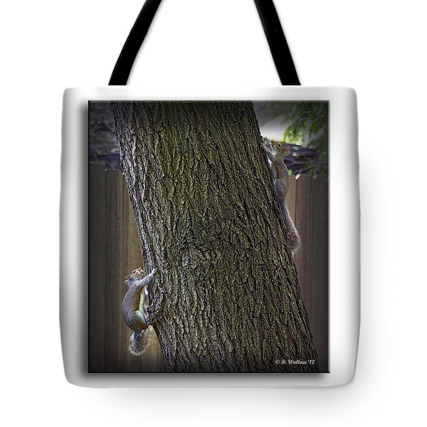 Hide And Seek Squirrels Tote Bag by Brian Wallace