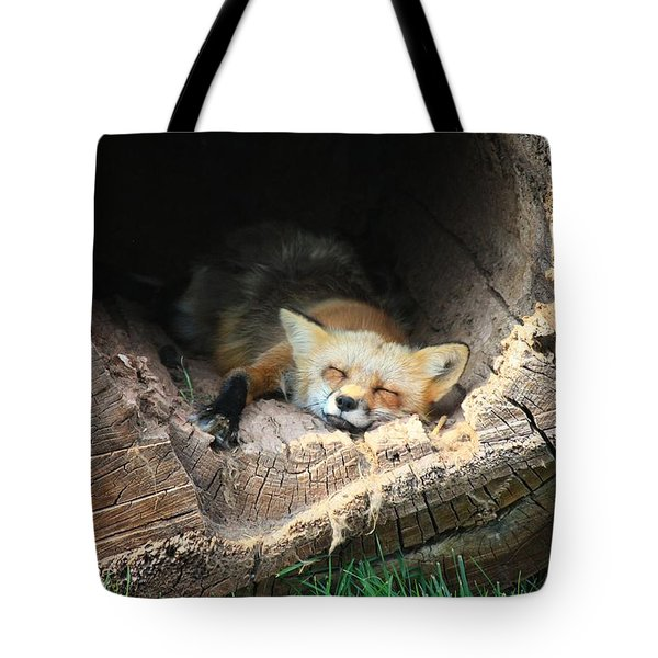 Hideout Tote Bag by Veronica Batterson