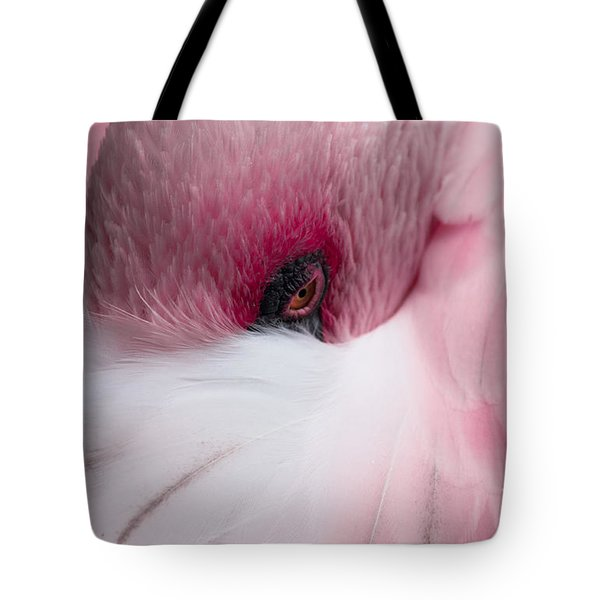 Hiding Flamingo Tote Bag