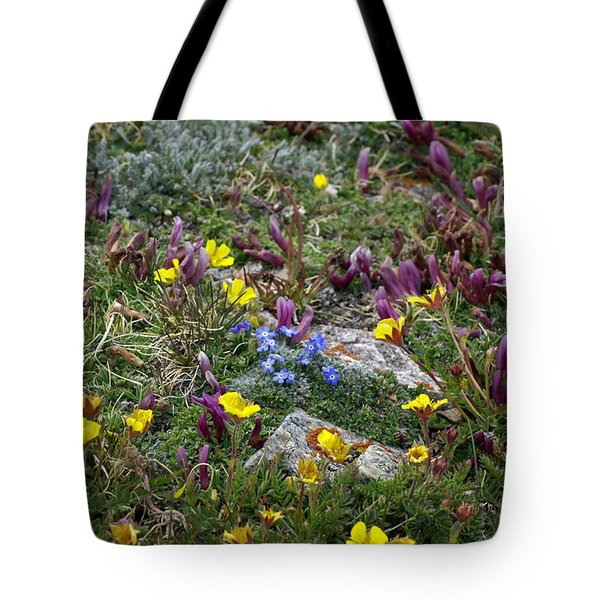Tote Bag featuring the photograph High Anxiety by Jeremy Rhoades