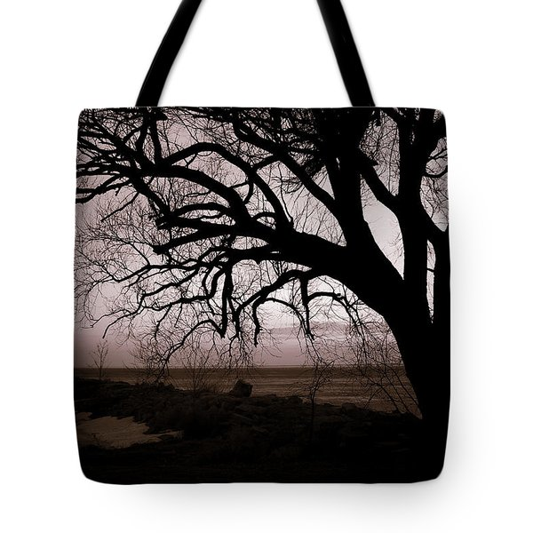 Tote Bag featuring the photograph High Cliff Beauty by Lauren Radke