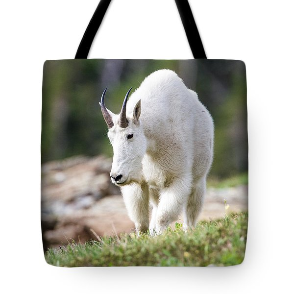 Tote Bag featuring the photograph High Country Mountain Goat by Jack Bell
