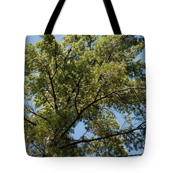 High Pine Tote Bag by Joseph Yarbrough