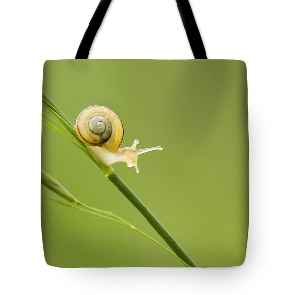 High Speed Snail Tote Bag by Mircea Costina Photography