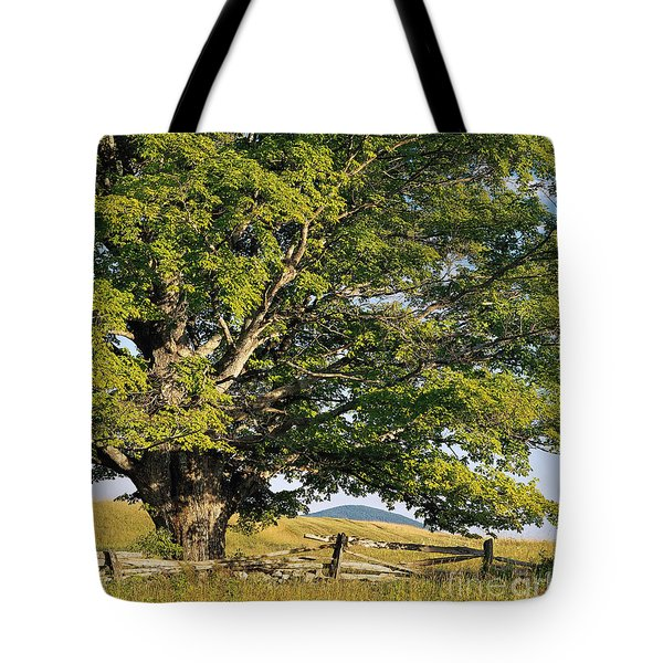 High Summer Tote Bag by Alan L Graham