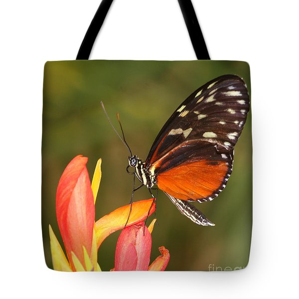 High Upon A Flower Tote Bag by Ruth Jolly