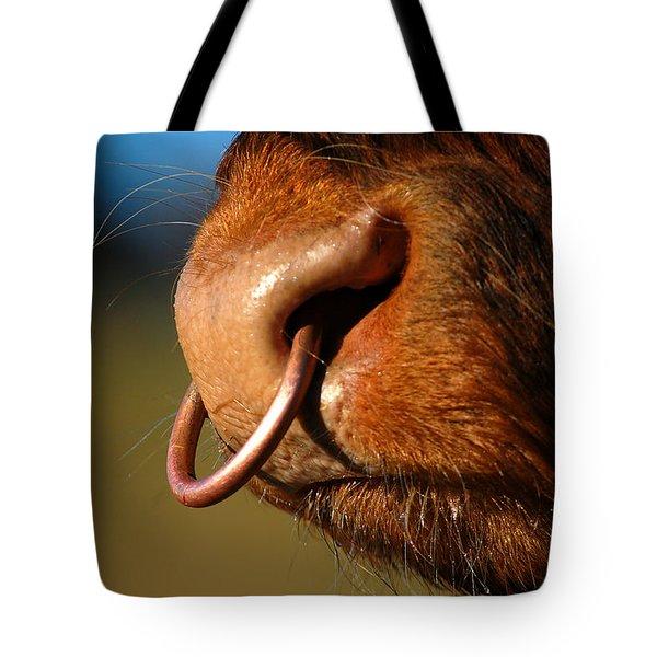 Highland Bull Tote Bag