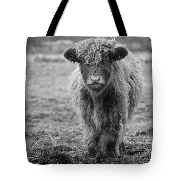 Highland Calf Tote Bag by Sonya Lang