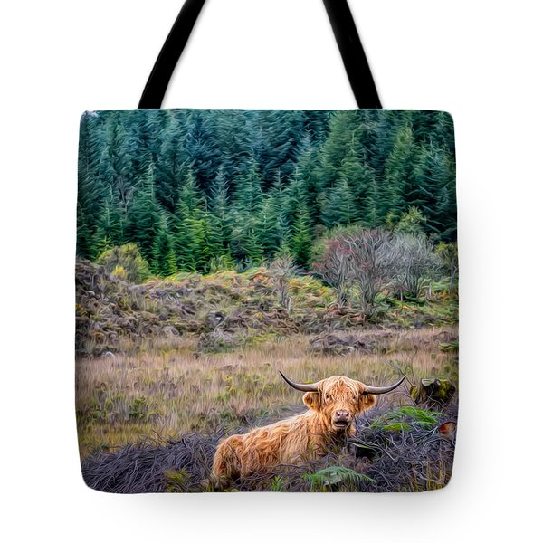 Highland Cow Tote Bag by Adrian Evans