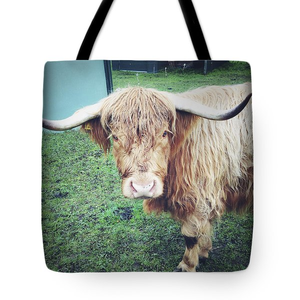 Highland Cow Tote Bag by Les Cunliffe