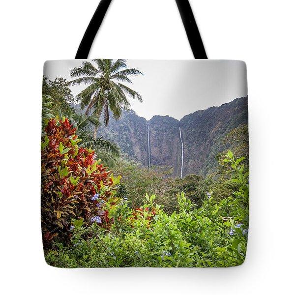Hiilawe And Hakalaoa Falls Tote Bag by Denise Bird