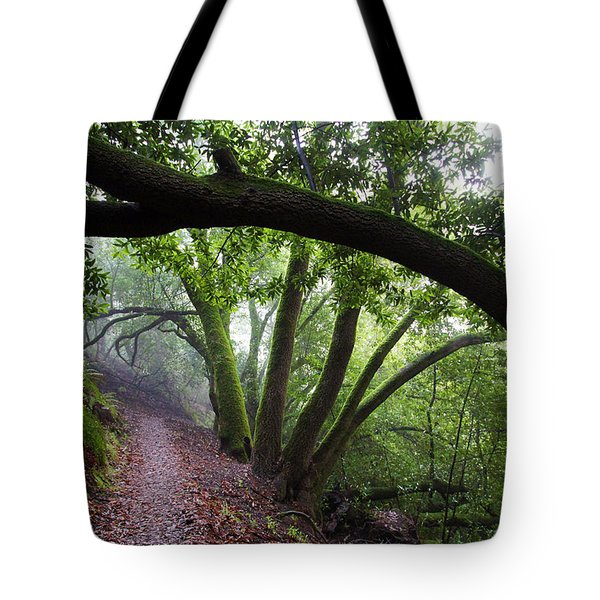 Hiking Huckleberry Tote Bag by Hugh Stickney