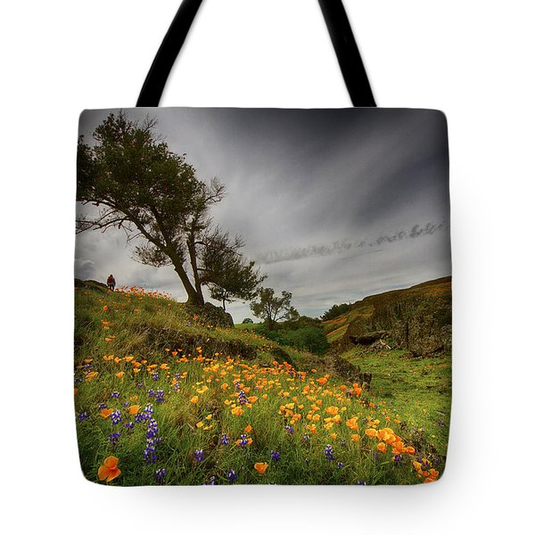 Hiking On Table Mountain Tote Bag
