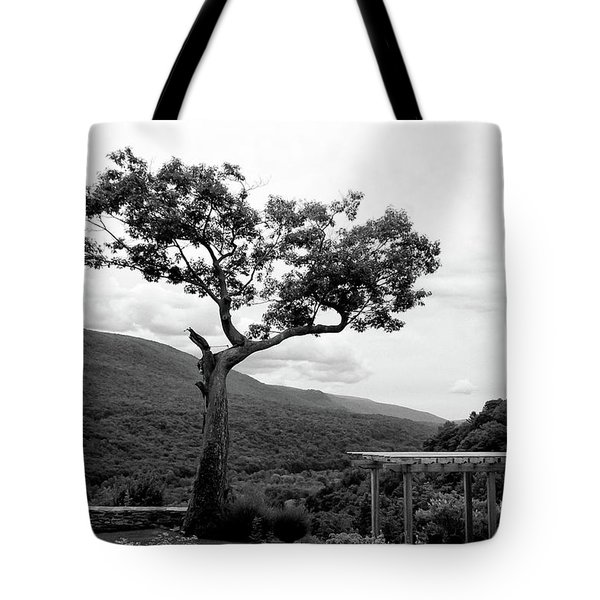 Hildene Tree 5689 Tote Bag