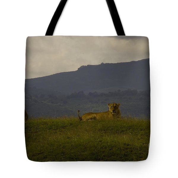 Tote Bag featuring the photograph Hillside Lions by J L Woody Wooden