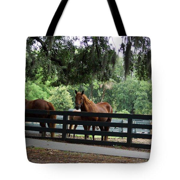 Hilton Head Island Beauty Tote Bag