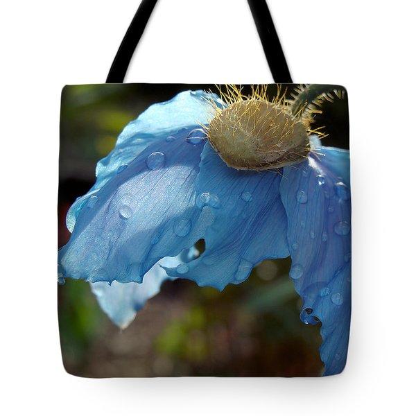 Blue Allure Tote Bag