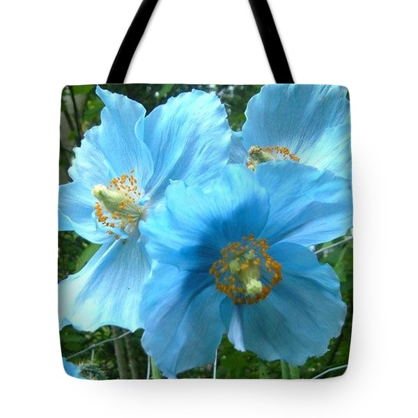 Himalayan Poppy Tote Bag